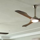 A Good Time for a Ceiling Fan